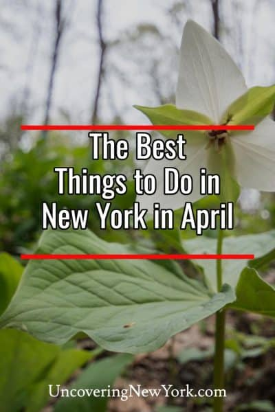 The best things to do in New York in April