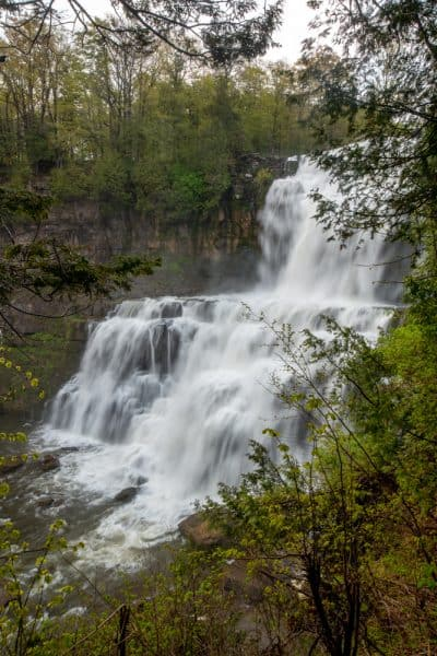 View of Chittenango Falls from the Gorge Trail