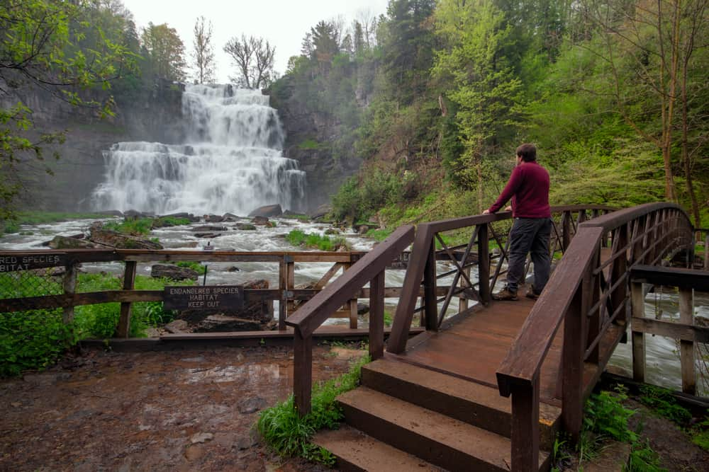 Gorge Trail in Chittenango Falls State Park in Madison County, New York