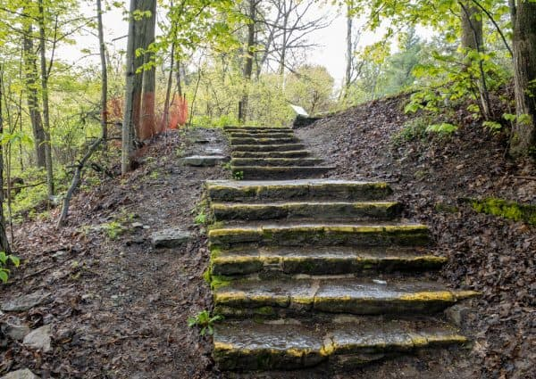 Steps on the Gorge Trail at Chittenango Falls State Park in Central New York