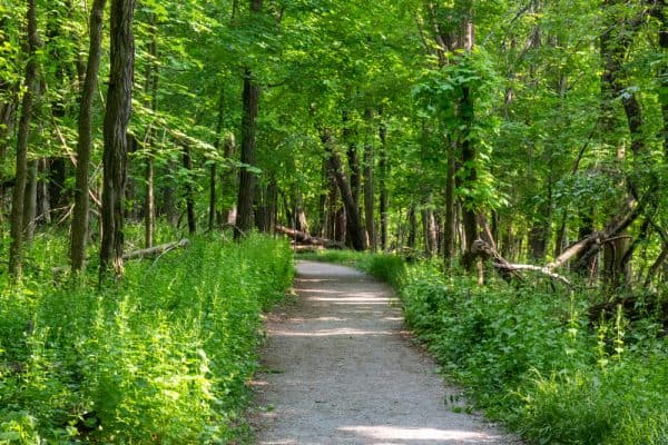Hiking the Dennings Trail in the Hudson Valley