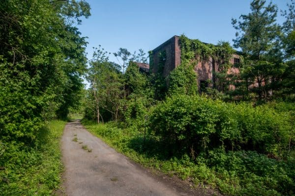 Dennings Point Brick Works Ruins
