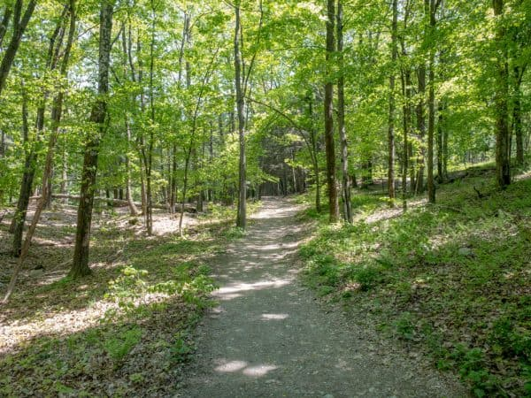 A hiking trail in the High Falls Conservation Area in Philmont New York
