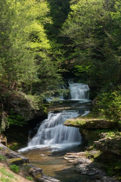 Tompkins Falls in the Delaware Wild Forest of the Catskills
