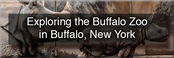 The Buffalo Zoo in Buffalo, New York
