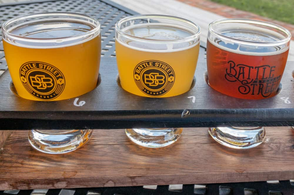 Review of Battle Street Brewery in Dansville, New York