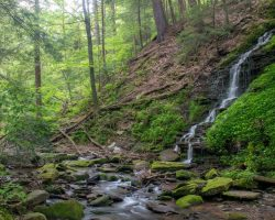 How to Get to Bridal Falls in Allegany State Park in Western New York