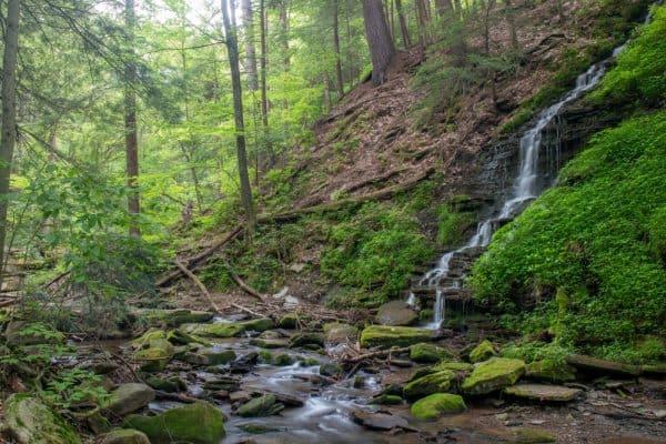 Bridal Falls in Allegany State Park in New York