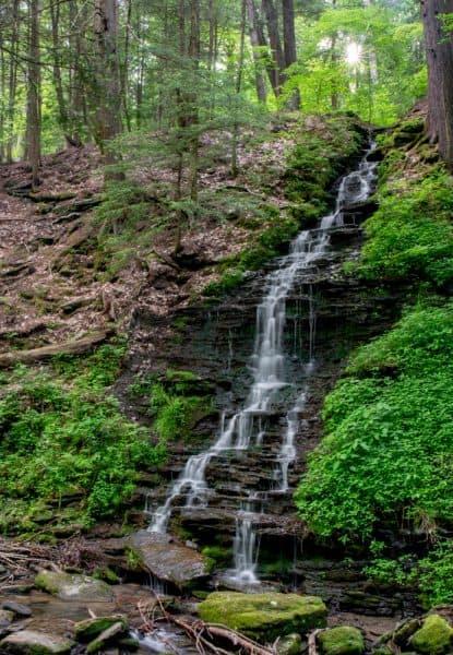 Bridal Falls in Allegany State Park in southwestern NY