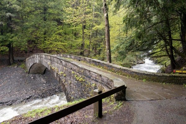 Bridge to Cowsheds Falls in Fillmore Glen State Park