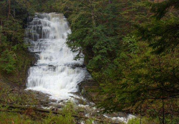 Waterfall on Dry Creek in Fillmore Glen State Park
