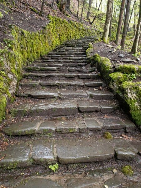 Stairs on the Gorge Trail in Fillmore Glen State Park in the Finger Lakes