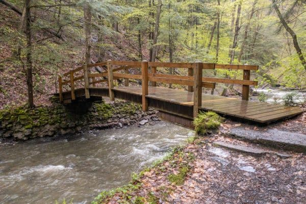Bridge on the Gorge Trail in Fillmore Glen State Park in Cayuga County New York