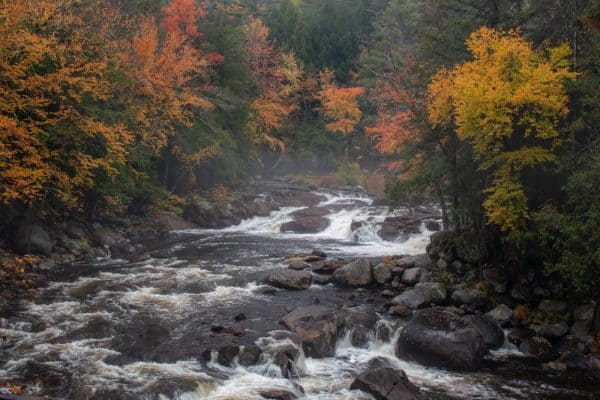 Trout Brook at the Natural Stone Bridge and Caves in Pottersville New York