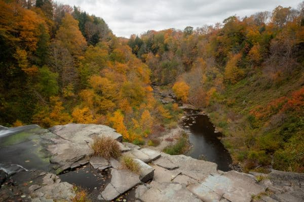 Salmon Falls Unique Area in Oswego County NY