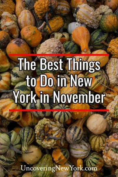 The best things to do in New York in November