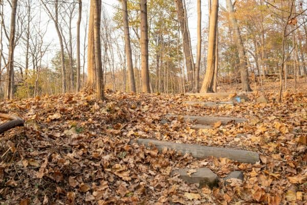 Trail to Buttermilk Falls in Nyack New York