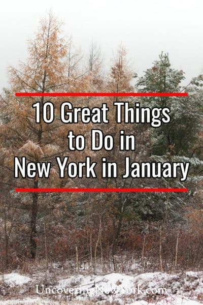 The best things to do in New York in January