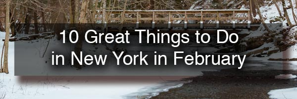 Things to Do in New York in February