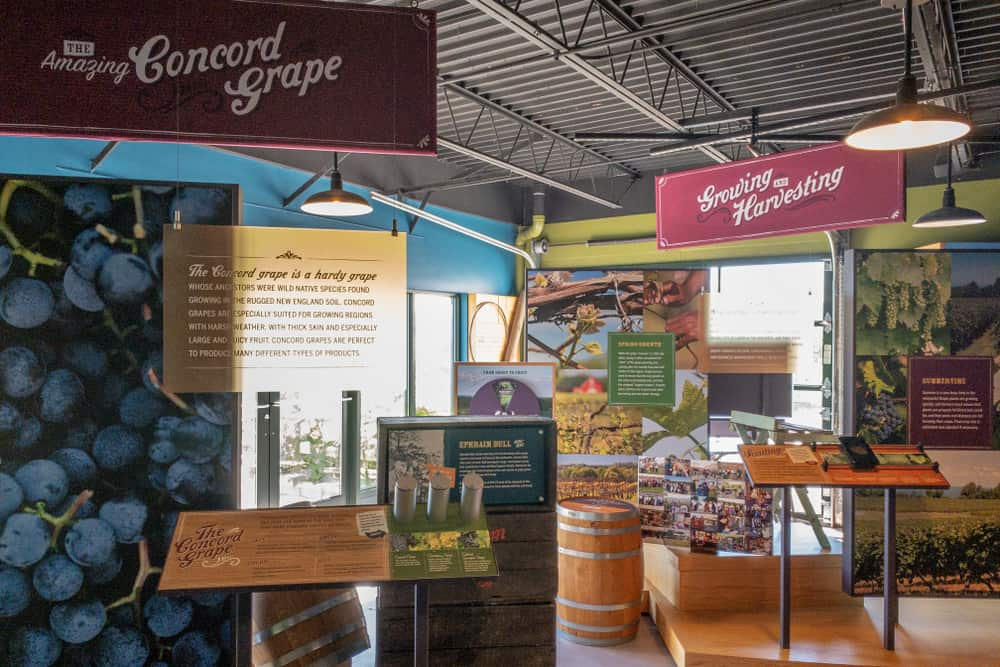 Touring the Grape Discovery Center in Chautauqua County New York