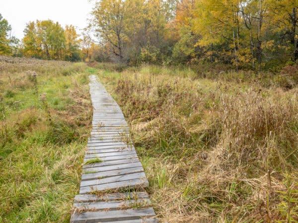 Boardwalk in Hart's Falls Preserve near Hermon New York