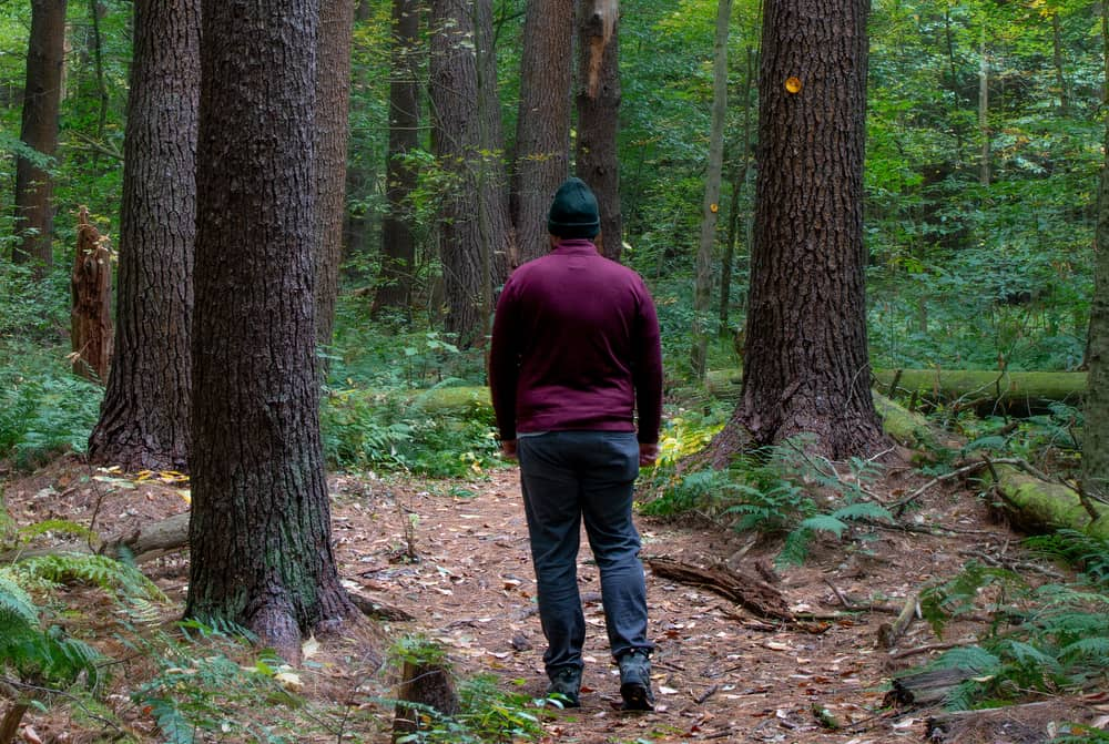 Man Hiking through Ushers Road State Forest in Saratoga County, NY