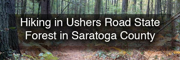 Hiking at Ushers Road State Forest in Saratoga County NY