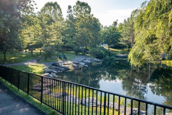 Pond in Glen Park in Williamsville NY