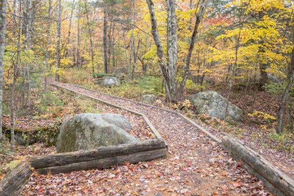Trail to Lampson Falls in Northern New York