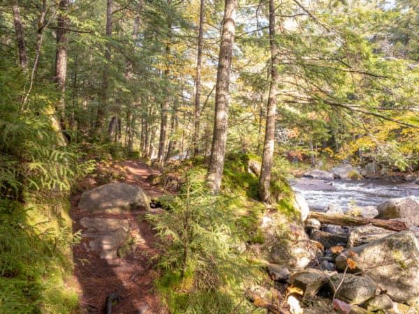 Trail along the Sacandaga River in the Siamese Ponds Wilderness of New York