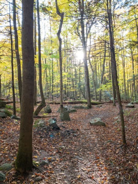 Trail to Roaring Brook Falls in the Keene Valley of New York