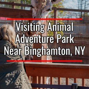 Animal Adventure Park in Binghamton, New York
