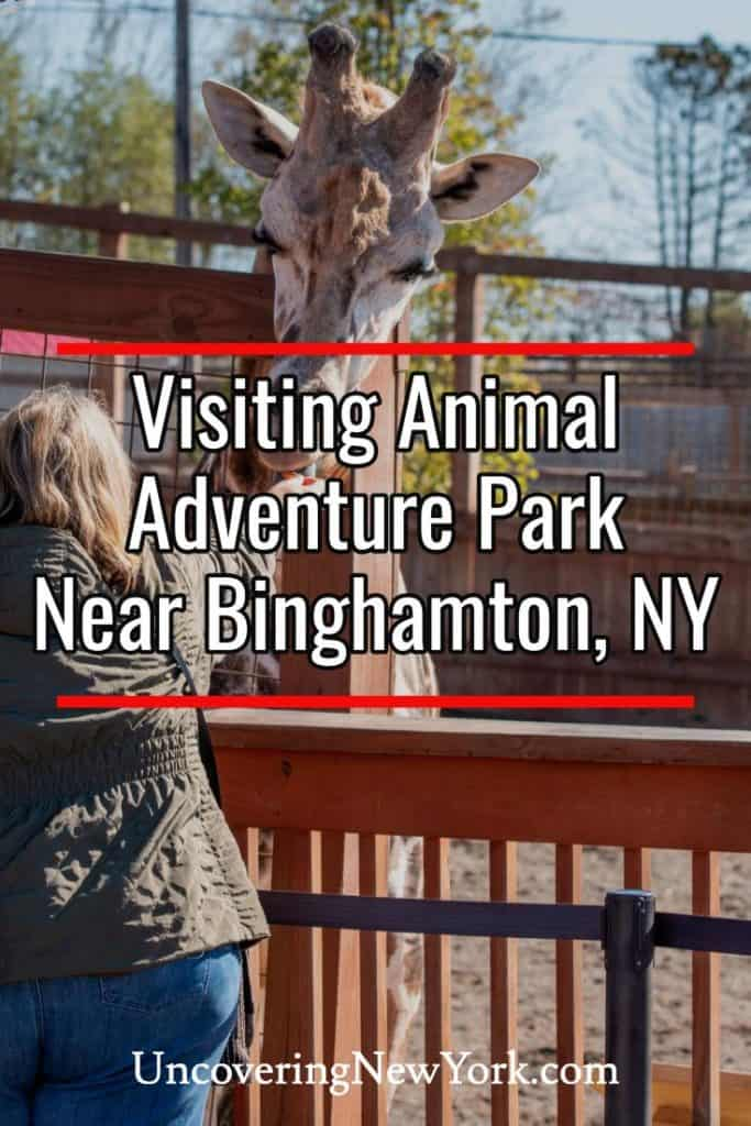 Animal Adventure Park in Binghamton, New York