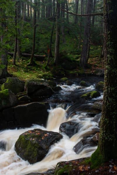 Jimmy Creek near Wells NY