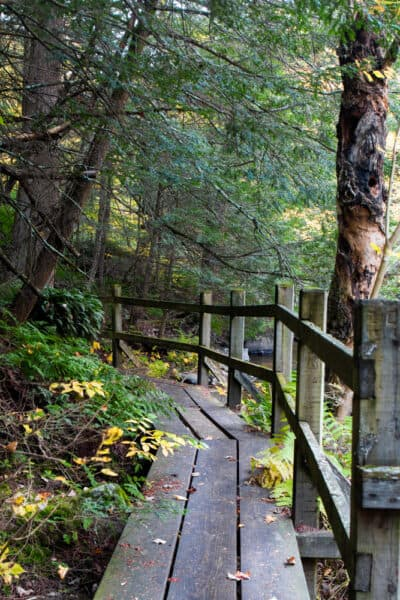 Boardwalk along the Chateaugay River in Franklin County NY