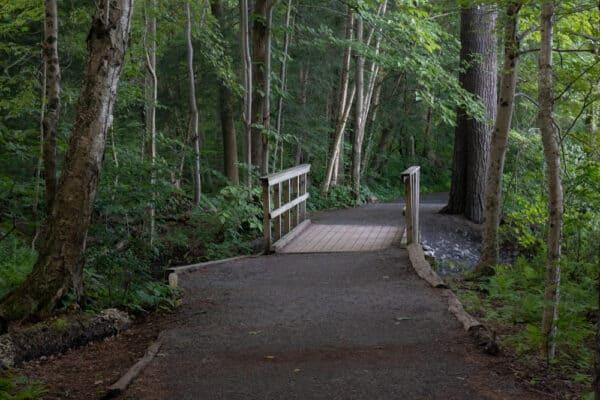 Green Lake Trail near Syracuse, New York