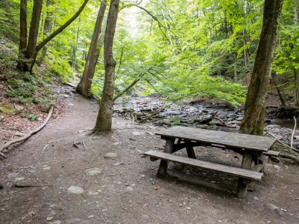 Picnic table at Grimes Glen Park in the Finger Lakes