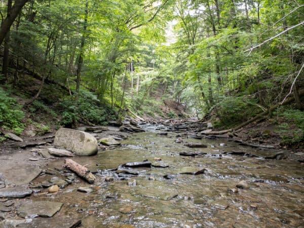 Grimes Creek in Naples, NY