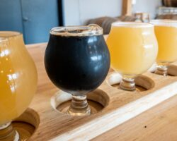 Beer Tree Brew Co. Near Binghamton: One of New York's Best Breweries