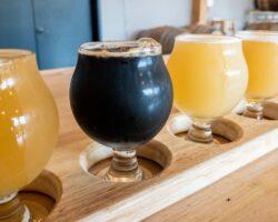 Beer Tree Brew Co. Near Binghamton: One of New York's Best Breweries