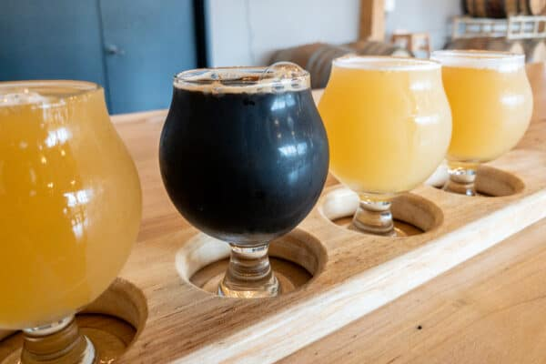 Flight at Beer Tree Brew Co near Binghamton, New York