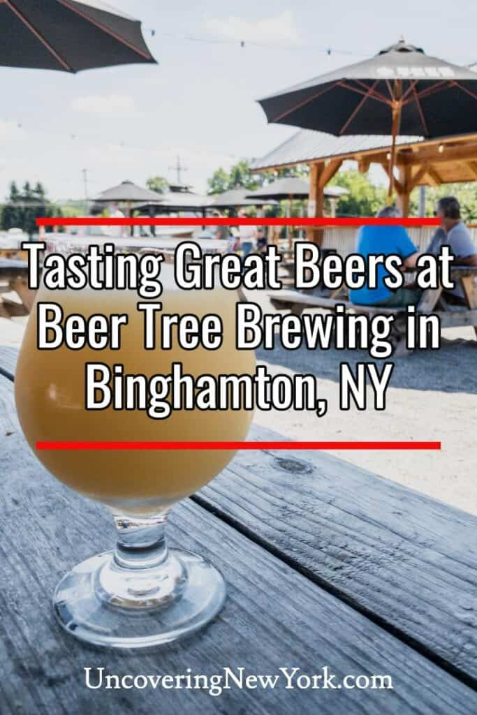 Beer Tree Brew Co in Binghamton New York