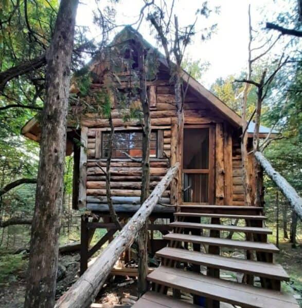 The Adirondack Treehouse