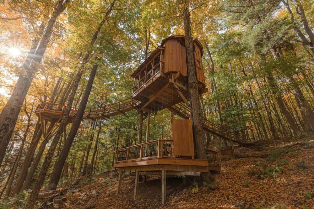 Chez' Tree Rest Treehouse on Airbnb in New York