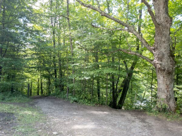 Trails to Pixley Falls in Oneida County New York