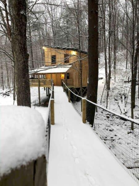 Suspension bridge Treehouse in New York