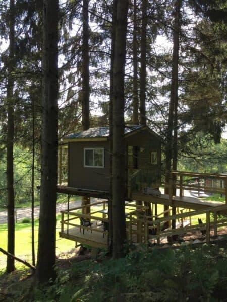 Wag Trail Inn Treehouse