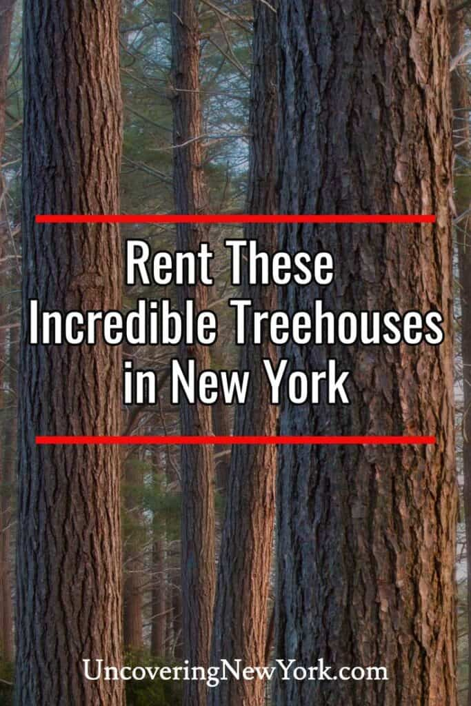 Treehouses in New York