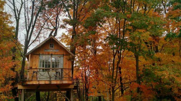 Whispering Wind Treehouse in Washington County New York