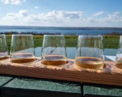 Sampling Wines at Boundary Breaks Winery: One of the Finger Lakes' Best Wineries